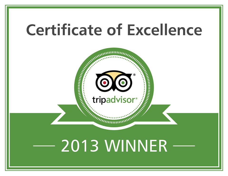 Certificate_Excellence_2013